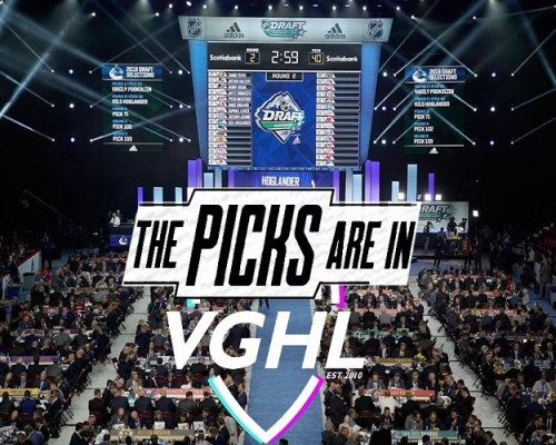 Season 20 VGNHL Entry Draft Review